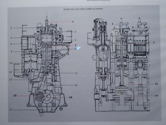 DSCN1100